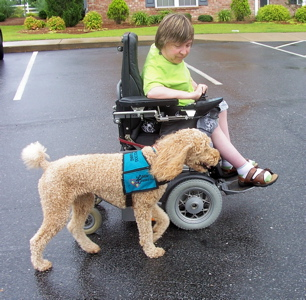A Little About Service Dogs